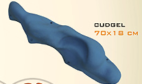 Macro Gudgel-0