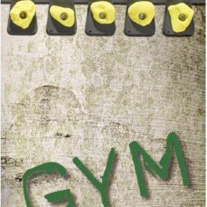 Monkey Hardware gym